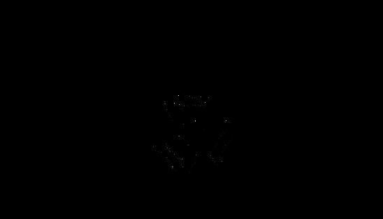 Logo definitivo per Home.png