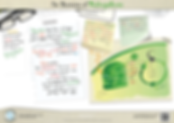211.-Photosynthesis-Overview-A3-poster.p