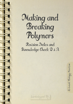Making and Breaking Polymers PDF