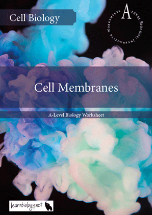 Interactive-Worksheet---Cell-Membranes.p