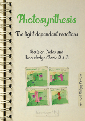 Photosynthesis: Light Dependent reactions PDF