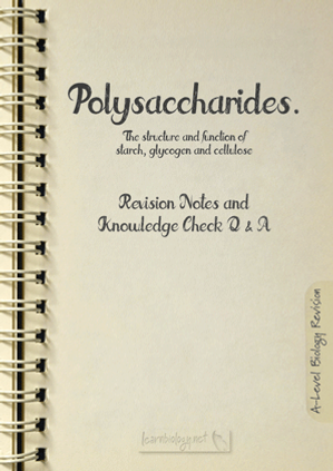 A-Level Biology Polysaccharides: The Structure and Function of Starch, Glycogen and Cellulose Revision notes with knowledge check questions and answers pdf
