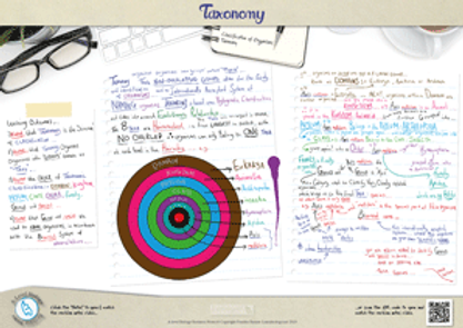 Classification of organisms - Taxonomy A-level biology Classification System A3 Poster PDF for A Level Biology