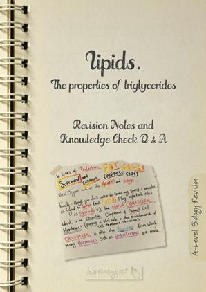 Properties of Triglycerides PDF
