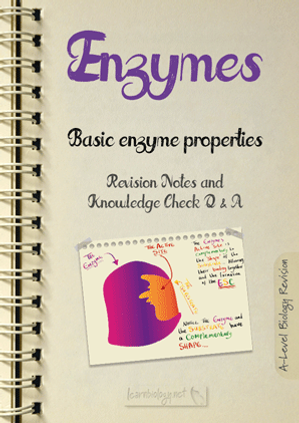 A Level Biology:Enzymes - Basic Enzyme Properties Revision Notes with Knowledge Check Questions and Answers pdf