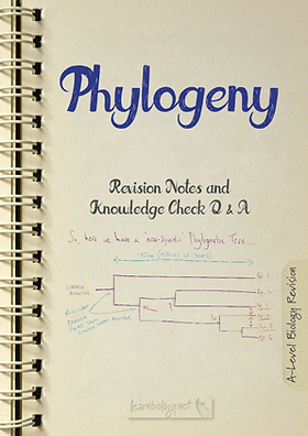 A-Level biology classification - Phylogeny revision notes with knowledge check Q and A PDF