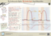 140.-Cardiac-cycle--graph-A3-Poster.png