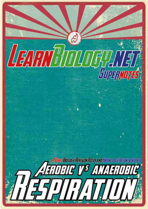 Aerobic V Anaerobic Respiration