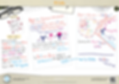 79.-B-Cells-A3-poster.png