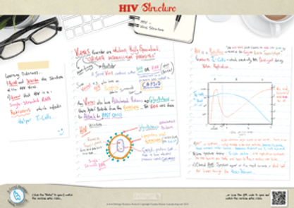 HIV Virus Structure, Infection of T-cells and graph interpretation A3 Poster PDF for A Level Biology