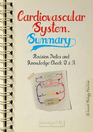Cardiovascular system summary PDF