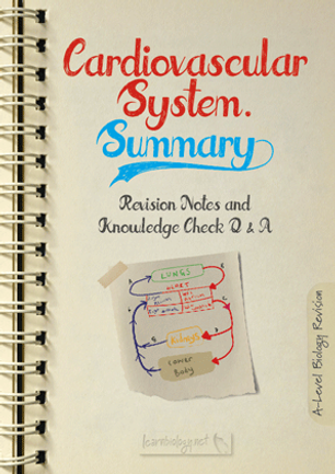 a-level biology cardiovascular system summary revision notes and knowledge check PDF