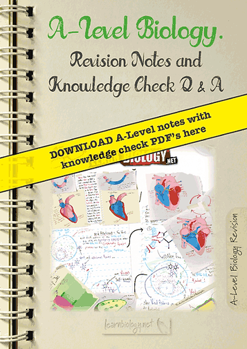 A level biology revision notes and knowledge check questions and answers by learnbiology.net