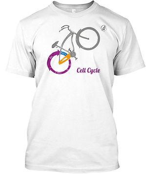 Cell_Cycle_Wheelie.Ed._Basic_T.£9.99.jpg