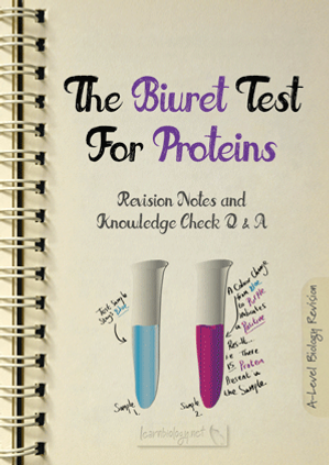 A Level Biology: Proteins - Biuret test for Proteins Revision Notes with Knowledge Check Questions and Answers pdf