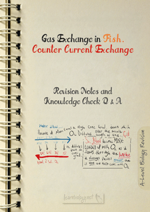 Gas exchange in Fish The counter current exchange principle Revision Notes with Knowledge Check Questions and Answers PDF for A- Level Biology