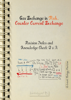Counter Current Gas Exchange PDF
