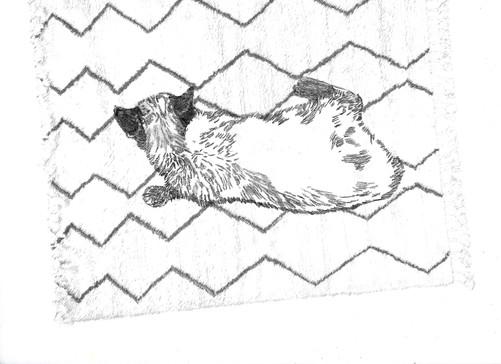 Kitten on Rug