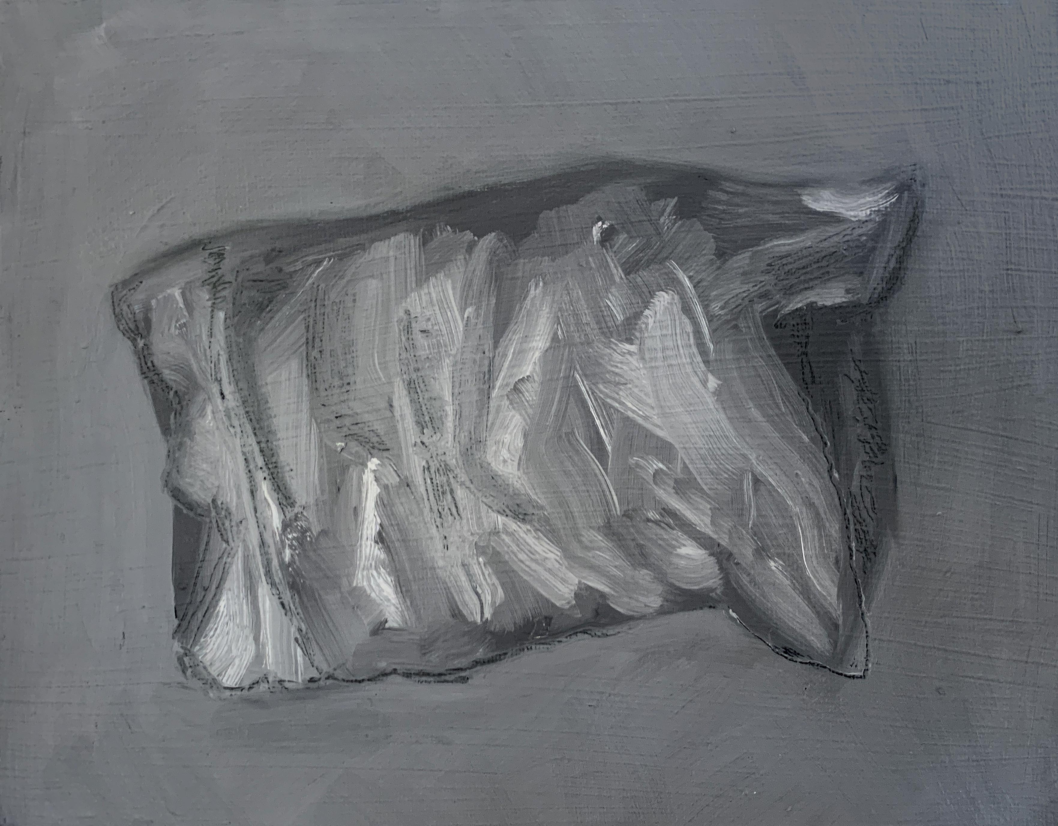 Pillow Palimpsest II
