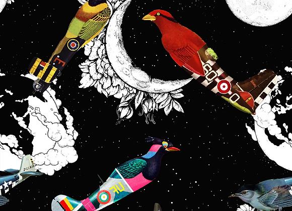 Aves surrealismo