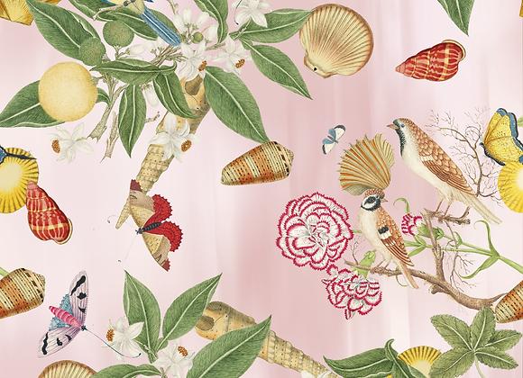 Garden shells