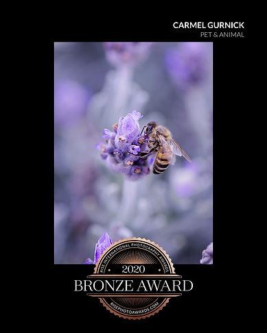 DSC_4113 lavendar bee_certificate (1).jp