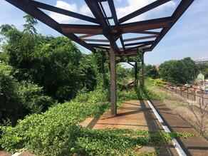 Inclusive Public Spaces on Staten Island's North Shore