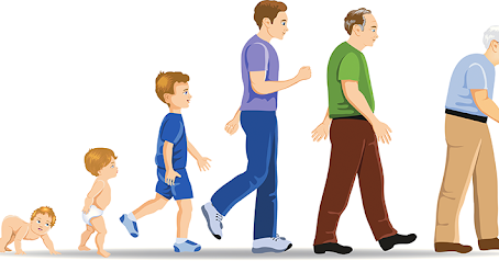 Why & How Some Age Faster than Others