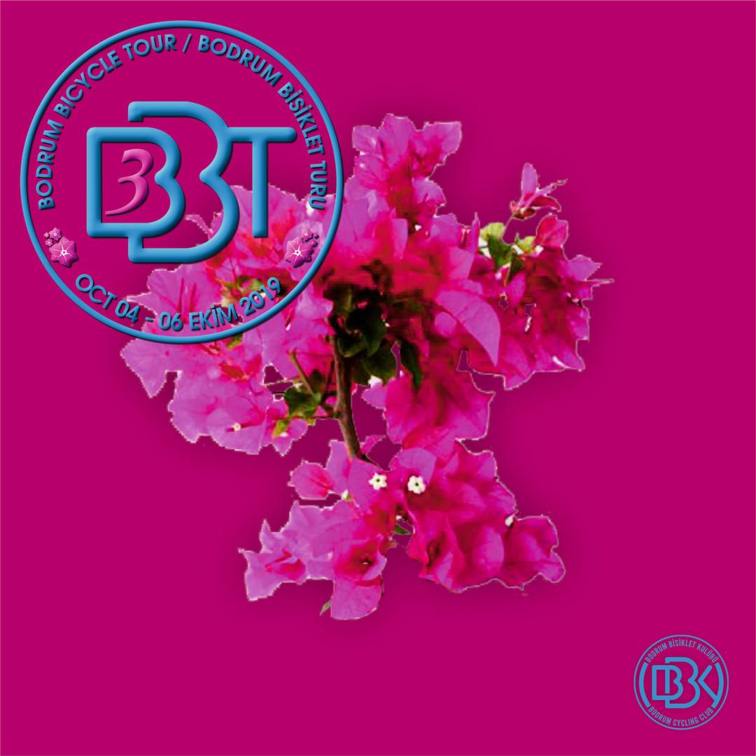 BBT3_face17.jpg