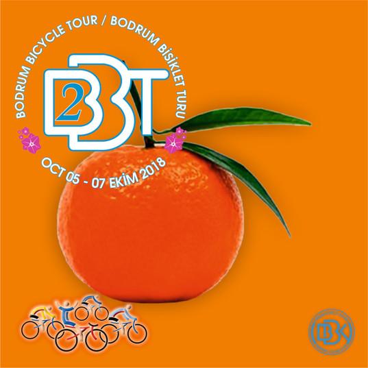 BBT2_12.jpg