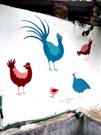Chickens, India 2020