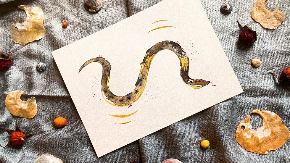 Grey Snake