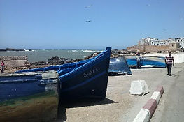 One day trip to the medina of Essaouira