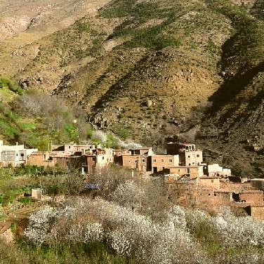 Tamatert village