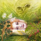 Snowdonia Tales Cover