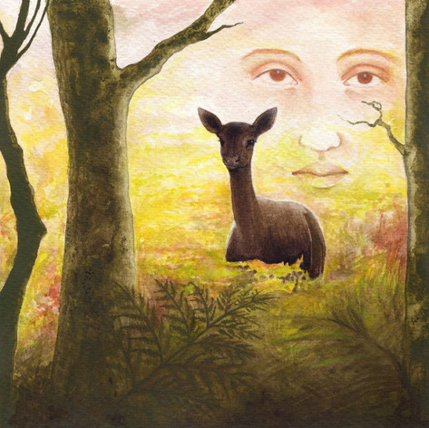 County Antrim Folktales.jpg