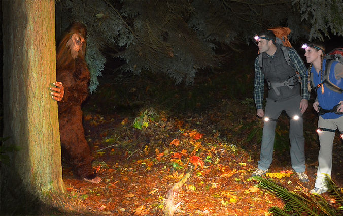 Hikers with LED headlamps and LEGLIGHTS and Sasquatch Big foot in forest