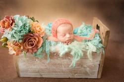ensaio newborn ensaio recém-nascidos