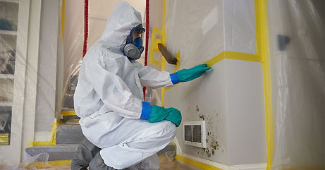 mold-inspection-specialist.jpg