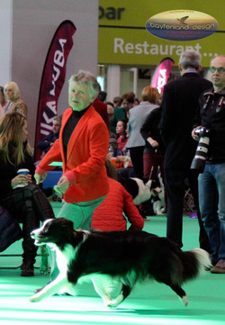 Shelby Crufts 2016