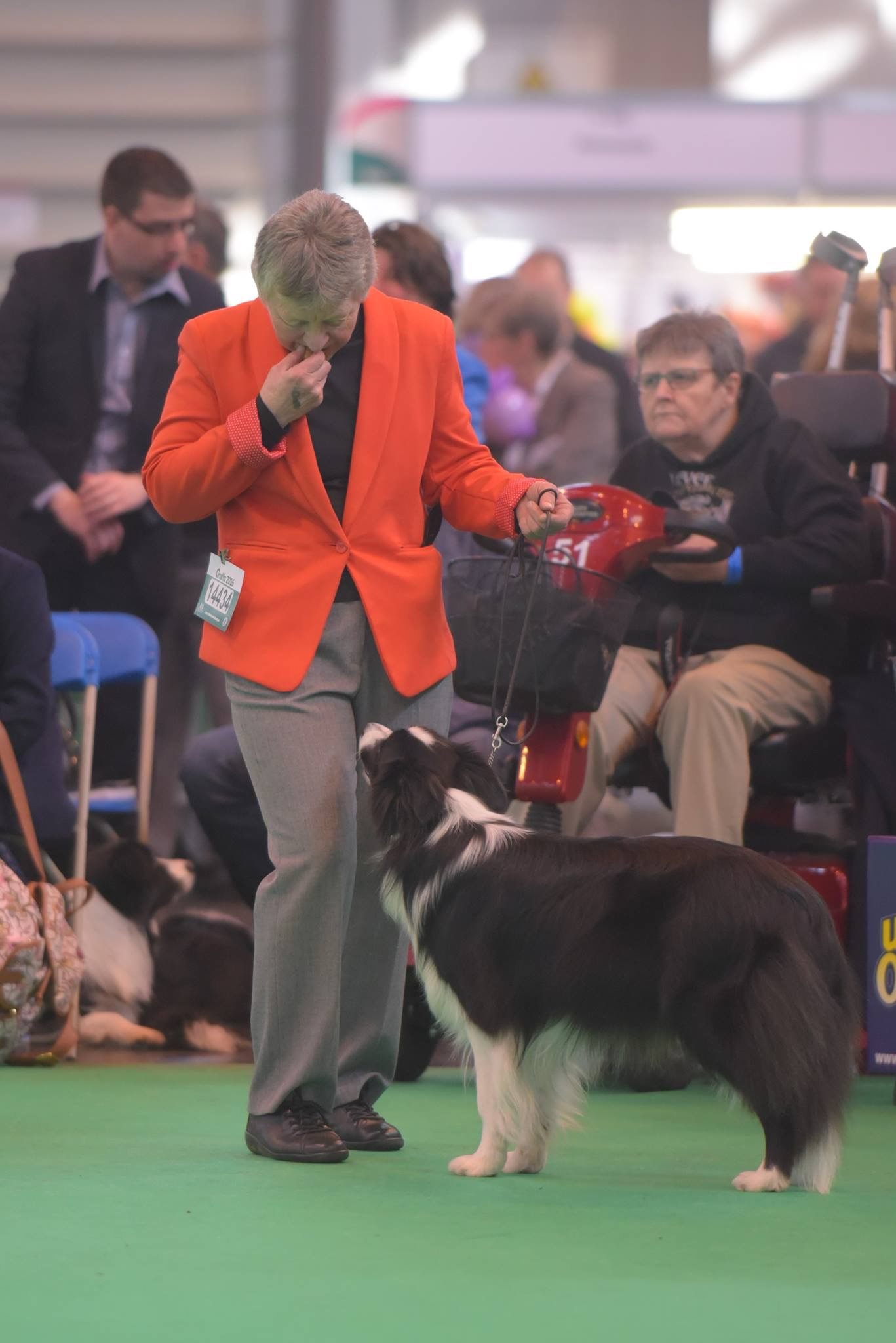 Alison and Shelby crufts 2016