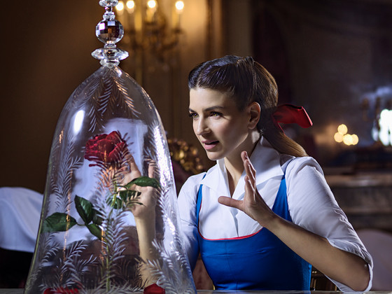 Disney The Beauty and The Beast