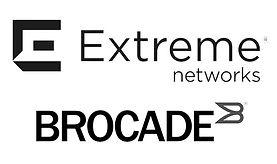 extreme brocade.jpg