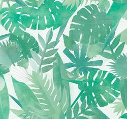 Botanic Schatt