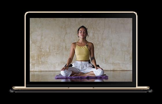 laptop mediation .png