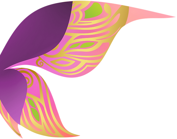 new-wing-2.png