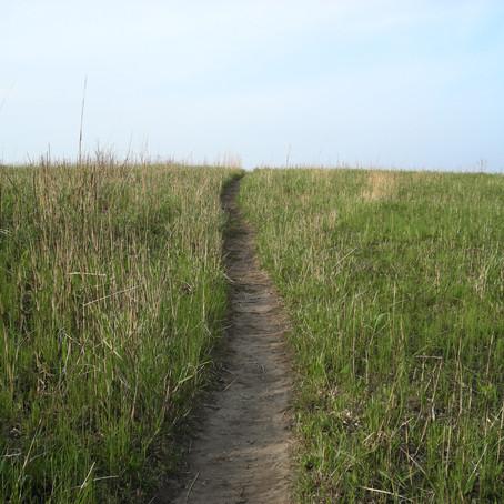 この径のむこう、への旅は続きます