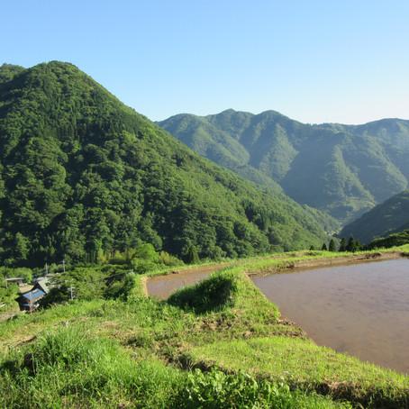 「高千穂郷」を歩く旅(2)