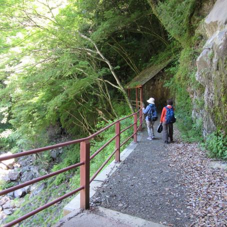 「高千穂郷」を歩く旅(3)