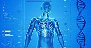 human-body-landscape.jpg